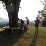 12 Musiker Baum
